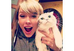 As dez fotos mais fofas e engraçadas dos gatos de Taylor Swift