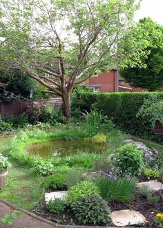 Neuer Teich und Moor - Wasserspiele - Homes for Wildlife - Die RSPB-Community Garden Pond Design, Bog Garden, Garden Cottage, Shade Garden, Dream Garden, Landscape Design, Backyard Water Feature, Ponds Backyard, Garden Ponds