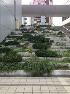♂ Sustainable architecture design Urban green levels