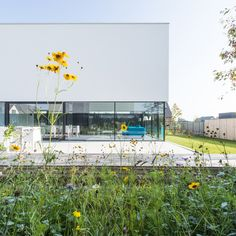 Gallery of RAVE / Tom Mahieu Architect - 3