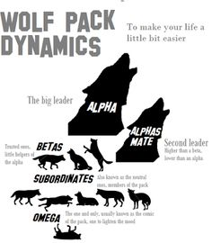 Wolf Pack Dynamics. If people adopted this philosophy in their families, life might actually work out in the positive. Wow! What a concept.
