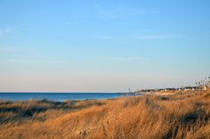 memorial day dewey beach rentals