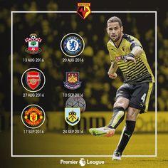 Watford FC (@WatfordFC)   Twitter