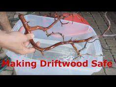 Adding Rocks and Wood to Your Freshwater Aquarium   RateMyFishTank.com                                                                                                                                                                                 More