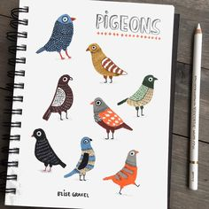 The first page in my new #sketchbook : #pigeons! Which one do you prefer? #illustrationoftheday #sketch #doodleoftheday