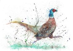 """Fez"" Pheasant print available as a A4 or A3 silk 250gsm print or A4 or A3 fine art Giclee print on watercolour paper signed"