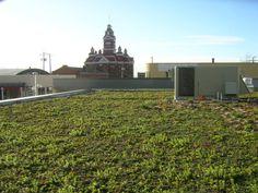 Como fazer seu telhado verde   http://www.bimbon.com.br/projeto/como_fazer_seu_telhado_verde