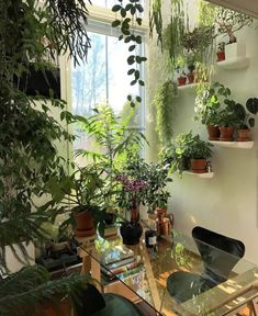 Room With Plants, House Plants Decor, Plant Decor, Office With Plants, Home Design, Interior Design, Design Ideas, Floor Design, Design Art