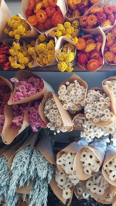 Dried Flower Bouquet, Dried Flowers, Flower Bar, Cactus Flower, Dried Flower Arrangements, Flower Market, Flower Shops, Flower Aesthetic, Flowers Nature