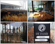 Paviljoen van De Dame    Op een grijze winterse zaterdag er op uit gaan voor een lekkere lunch is altijd een goed idee. Wij bezochten onlangs het, in begin 2016 geopende, Paviljoen van De Dame. Dit nieuwe restaurant is gelegen aan het Paterswoldsemeer, even ten zuiden van Groningen.