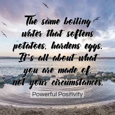 The same boiling water that softens potatoes, hardens eggs. It's all about what you are made of not your circumstances // Powerful Positivity