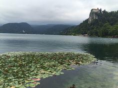 Lake Bled on a beautifully moody-grey morning.