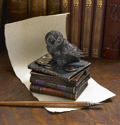 Owl on Books Trinket Box.  The far-seeing owl is regarded in many cultures as a symbol of wisdom. This owl, atop a stack of books, has a magnifying glass for an even closer examination. Gaelsong.com