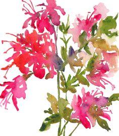 Fresh Pick Azaleas Watercolor, Print 7.5x9.5, Watercolor Flowers. $19.00, via Etsy.