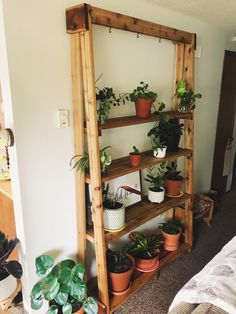 A community focused on the discussion, care, and well-being of houseplants! House Plants Decor, Plant Decor, Plant Ladder, Outdoor Plants, Outdoor Plant Stands, Plant Shelves Outdoor, Indoor Herbs, Plants Indoor, Indoor Gardening