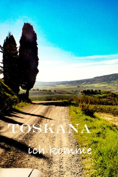 Tuscany and its dream landscapes tour - New Site Camping Holiday, Holiday Travel, Travel Around The World, Around The Worlds, Holiday Pictures, Road Trip, Country Roads, Tours, Landscape
