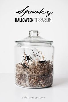 Kid Inspiration - All for the Boys - DIY Spooky Halloween Terrarium