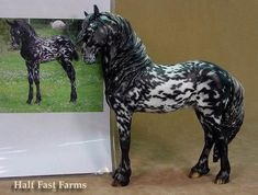 Half Fast Farms - the image, which the model was based off of, is of Mystic Warrior, when he was a baby.