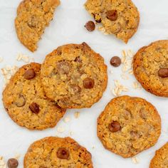 Chocolate chip oatmeal cookies lyung on white baking paper with oats and chocolate drops scattered around. Healthy Family Dinners, Kids Meals, Lactation Cookies, Oatmeal Cookies, Easy Kid Friendly Dinners, Boost Milk Supply, Fussy Eaters, Baby Eating, Cookie Recipes
