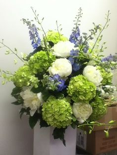 hydrangea, Love In Bloom, Key Weest
