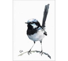 Fairy Wren originele aquarel vogel schilderen van 5 x 7 inch