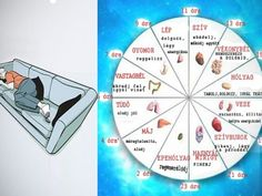 Traditional Chinese Medicine Explains Why You Keep Waking Up At Night And What To Do To Solve It Health Care Fitness Feeling Sick, How Are You Feeling, Body Clock, Traditional Chinese Medicine, Explain Why, Life Purpose, Our Body, Alternative Medicine, Drinking Tea