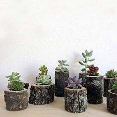 18 Fascinating DIY Wood Log Decorations That You Can Make For Free - Diy Garden Decor İdeas Log Planter, Wood Planters, Planter Ideas, Wood Stumps, Wood Logs, Wood Tree, Tree Stumps, Wooden Projects, Diy Wood Projects
