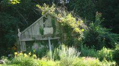 Old Barn near Dartmouth