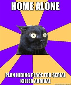 Anxiety Cat - Home alone Plan hiding place for serial killer arrival