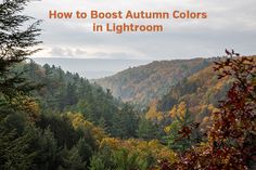 This tutorial walks through the process of editing a fall landscape photo in Adobe Lightroom, boosting the autumn colors for more impact.