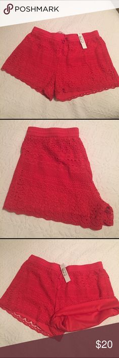 Jun&ivy crochet shorts Jun&Ivy crochet shorts, red roy color. Shell 100% cotton, lining 100% polyester. New with tag!! Size M Jun&Ivy Shorts