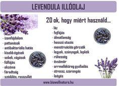 Levendula illóolaj, 100%-os higítatlan levendula illóolaj, BioWell Holistic Healing, Natural Healing, Herbalife, Doterra, Food Hacks, Good To Know, Nalu, Healthy Lifestyle, Health Care