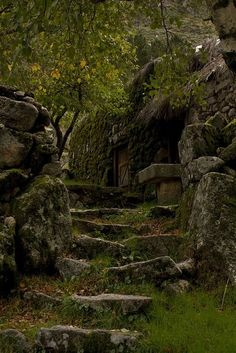 Home old water nature forest Stairs house antique statue nordic hidden celtic Stones norse deserted