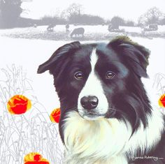 The Otter House range of country themed products includes gifts that are for any. - The Otter House range of country themed products includes gifts that are for any farmyard fanatic. Border Collie Art, Sorry Gifts, Cute Piglets, Cat Paws, Farm Yard, Pet Gifts, Otters, Dog Art, Dog Toys