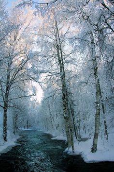 Snow River, Finland photo via stardust