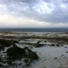 Morning at gulf shores Bon secour