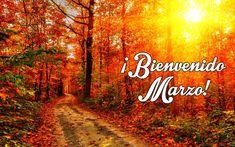 Imagenes de Jardines bonitos bienvenido Marzo