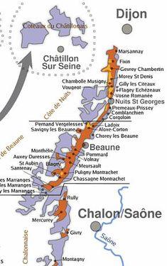 Les vins de Bourgogne Guide Vin, Wine Guide, Burgundy Wine Map, Vin France, Wine Vineyards, Bordeaux Wine, Wine Education, Wine Down, French Wine