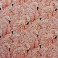 flamingo behang terra oranje xxx42