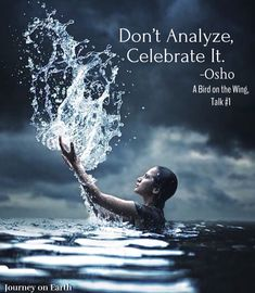 Don't analyze, celebrate it. Osho, A Bird on the Wing, Talk #1