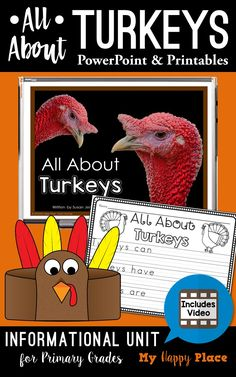 TEACH YOUR CHILD TO READ - Its turkey time! Kindergarten and first grade students will love the turkey activities in this set! Updated to include an informational video and a cute turkey hat! - Super Effective Program Teaches Children Of All Ages To Read. Turkey Kindergarten, Teaching Kindergarten, Kindergarten Activities, Teaching Kids, Kindergarten Thanksgiving, Teaching Reading, Preschool, Turkey Facts, School Holiday Activities