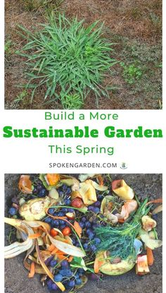 Want a more eco-friendly garden? Learn to create a more sustainable garden by listening to this quick podcast for garden design tips you can start right now. Landscape Maintenance, Garden Maintenance, Garden Soil, Garden Care, Summer Plants, Blooming Plants, Spring Garden, Garden Planning, Sustainability