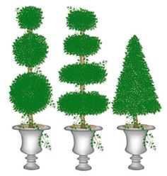 This medium set of topiaries wall stencils is perfect to use on a headboard . Potted Plants, Cactus Plants, Garden Plants, Tree Stencil For Wall, Tree Wall, Large Stencils, Patio Wall, Topiaries, Country Crafts