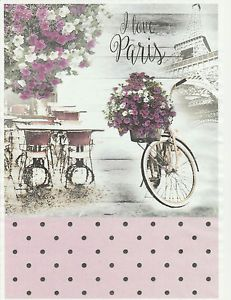 Ricepaper-for-Decoupage-Decopatch-Scrapbook-Craft-Sheet-Vintage-Rose-Paris-Bike