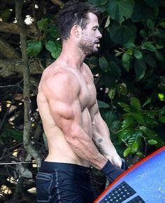 Chris Hemsworth Tattoo, Chris Hemsworth Shirtless, Liam Hemsworth, Shirtless Men, Jake Gyllenhaal, Chris Evans, Tom Holland, Tatoo Brothers, Tatoo Bird