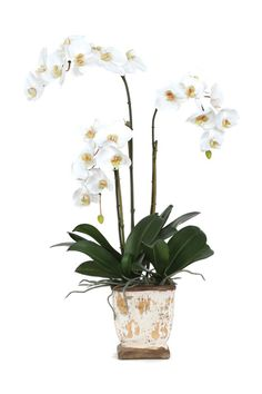 Beautiful White Orchic Silk Flower Arrangement.  Free Shipping. Faux Flowers, Silk Flowers, Luxury Home Decor, Luxury Homes, Faux Flower Arrangements, White Orchids, Wedding Accessories, Beautiful Bouquets, Bliss