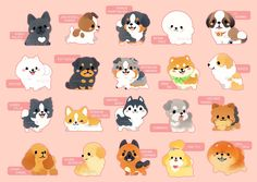 Dogs Clothes Hipster - - - - Dogs Accessories DIY - Dogs And Puppies Cartoon Cute Kawaii Animals, Cute Animal Drawings Kawaii, Cute Funny Animals, Cute Baby Animals, Cute Drawings, Cute Puppies, Cute Dogs, Chibi Dog, Cute Dog Drawing