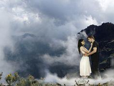 Pretty picture and Twilight.  Bonus.