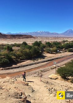 San Pedro de Atacama, Chile - 2015 - camera iPhone 6 - by The Helium Whale Visit Chile, The Beautiful Country, Us Travel, Whale, Iphone 6, Country Roads, San, Outdoor, Adventure
