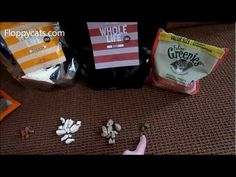 Ragdoll Cats and a Cat Treat Comparison for Gale - ねこ - ラグドール - Floppycats http://youtu.be/fkQUXmRYs7U